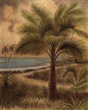 Island Palm II