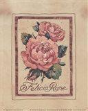 Vintage Felicia Rose