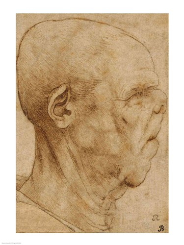 Caricature of the head of an old man, in profile to the right, c.1507 Poster by Leonardo Da Vinci for $32.50 CAD