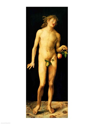 Adam, 1507 Poster by Albrecht Durer for $30.00 CAD