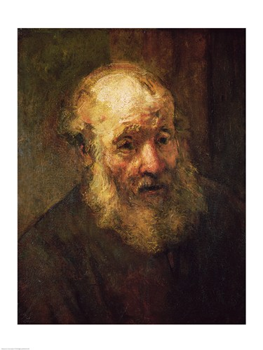 Head of an Old Man, c.1650 Poster by Rembrandt van Rijn for $30.00 CAD