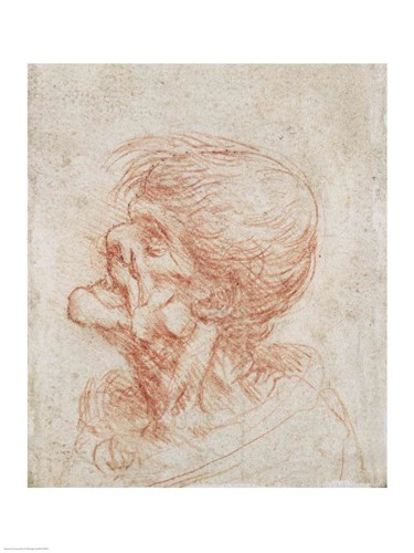 Caricature Head Study of an Old Man Poster by Leonardo Da Vinci for $30.00 CAD