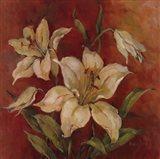 Crimson Lilies I