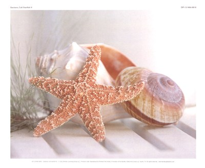 Cali Starfish II Poster by Gaetano Images inc.(guycali) for $8.74 CAD