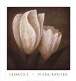 Floreo I