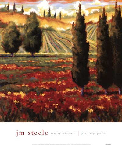 Tuscany In Bloom III Poster by JM Steele for $31.25 CAD