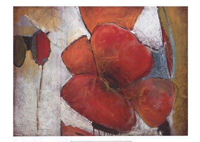 Full Blossom I Poster by Don Li-Leger for $42.50 CAD