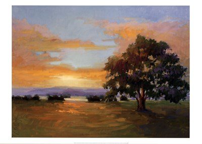 A Sunset Salute Poster by Vicki Mcmurry for $40.00 CAD