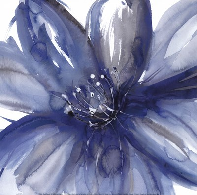 Blue Beauty I Poster by Rebecca Meyers for $18.75 CAD