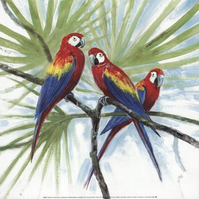 Parrots Poster by Arnie Fisk for $18.75 CAD