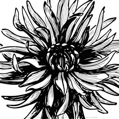Floral Outlines II Poster by Sabine Berg for $18.75 CAD