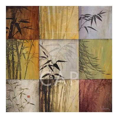 Bamboo Nine Patch II Poster by Don Li-Leger for $95.00 CAD
