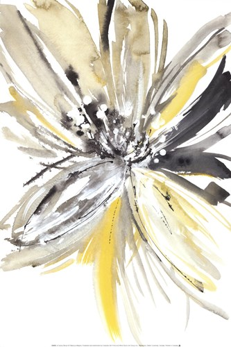 A Sunny Bloom Poster by Rebecca Meyers for $21.25 CAD