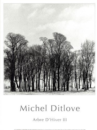 Arbres D'Hivers III Poster by Michel Ditlove for $13.75 CAD