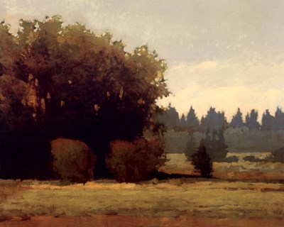 Evening Near Eugene Poster by Marcus Bohne for $50.00 CAD