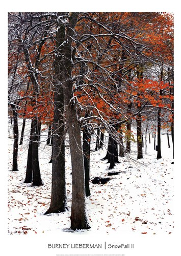 SnowFall II Poster by Burney Lieberman for $42.50 CAD