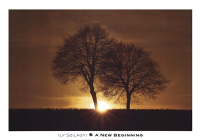 A New Beginning Poster by Ily Szilagyi for $58.75 CAD