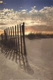 Dune Fence At Sunrise