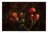 Fleur de lis Tulips