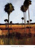 Tall Palms I