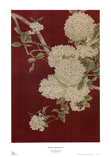 Butterfly and Hydrangea II Poster by Liu Chang for $37.50 CAD