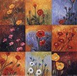 Poppy Fields I