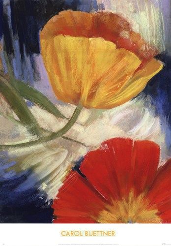Summer Tulips III Poster by Carol Buettner for $26.25 CAD