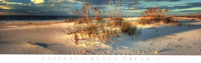 Beach Dream II Poster by Doug Cavanah for $66.25 CAD