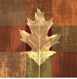 Fall Leaf II