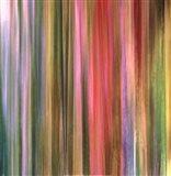 Spectra Falls I