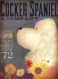 Cocker Spaniel & Co.