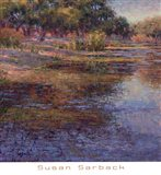 Sunlit Pond 1