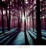 Technicolor Trees 3