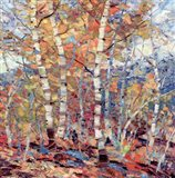 Birch Colors I