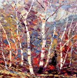 Birch Colors 2