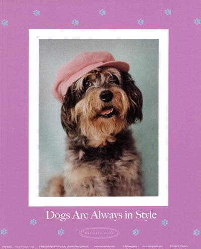 Always In Style Poster by Rachael Hale for $17.50 CAD