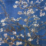 Blossoming Almond Tree, Saint-Remy, c.1890 Detail