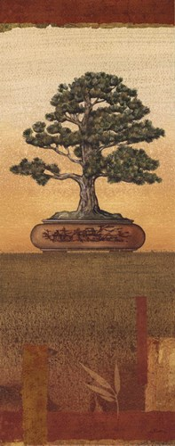 Bonsai I - Petite Poster by Charlene Audrey for $7.50 CAD