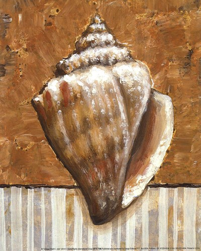 Vintage Shell II - mini Poster by K Bates for $7.50 CAD