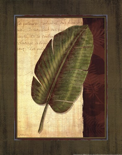 Palm Tropical II - grande Poster by Delphine Corbin for $20.00 CAD