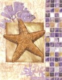 Mosaic Shell Collage II - mini