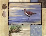 Sandpiper Collage II mini