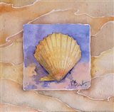 Scallop - Mini
