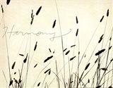 Grass Harmony