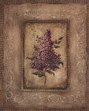 Grand Savin Lilac