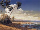 Kona Coast I - petite