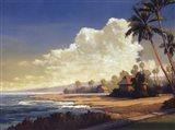Kona Coast II - petite