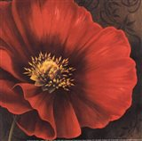 Rouge Poppies I -petite