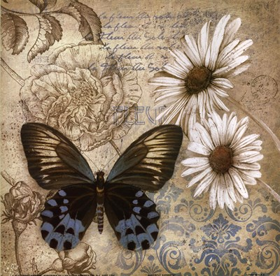 Butterfly Garden I Poster by Conrad Knutsen for $13.75 CAD