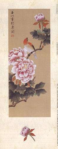 China Blossom I Poster by Unknown for $11.25 CAD